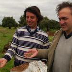 Masseria Fornaro_semina3