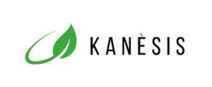 logo- kanesis