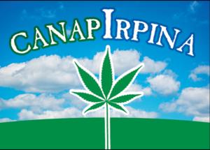 CanapIrpina2