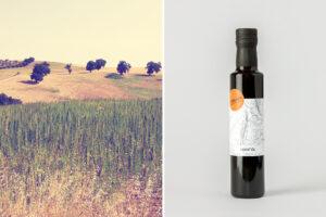 L'olio di canapa di Vitelium ©Davide Petrollino