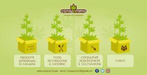 CanapAroma attività